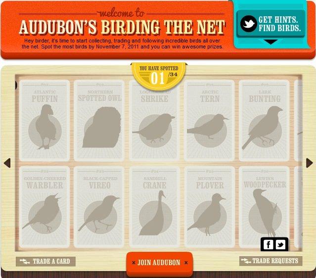 birding the net