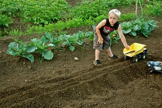 How to Introduce Gardening to Kids