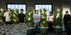 Inspirational teacher uses urban farming in the classroom to grow a brighter future