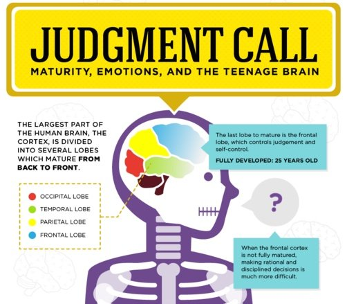 Judgment Call: Understanding the Teenage Brain