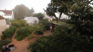 Inhabit permaculture documentary