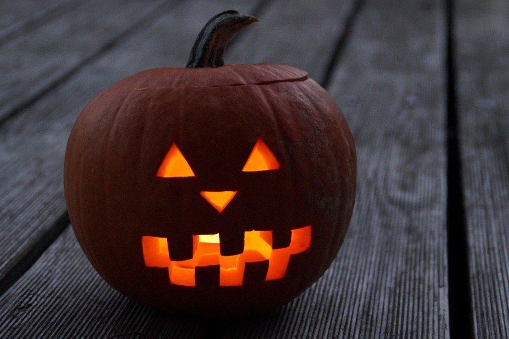 pumpkin-201956_1280