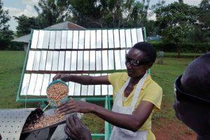 gosol-solar-peanut-roaster