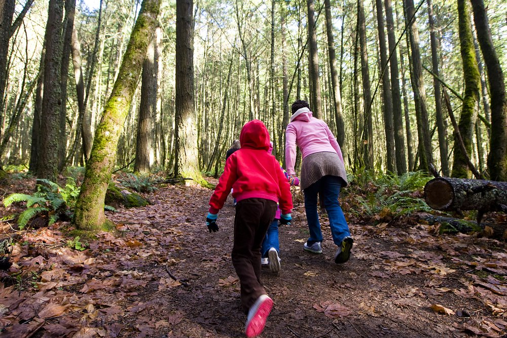 Getting Your Kids Acquainted With the Outdoors