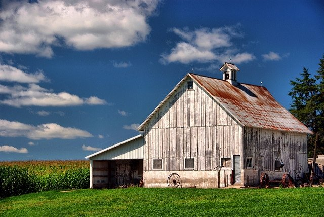 5 Tips to ready your barn for the winter