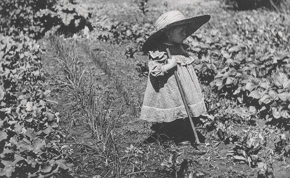 Teaching Children Patience With Gardening