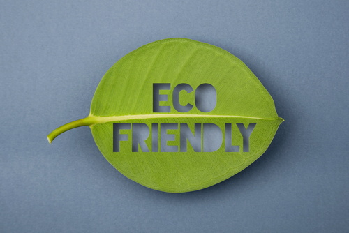 Eco-Friendly or Fraud? What to Look for When Buying Green