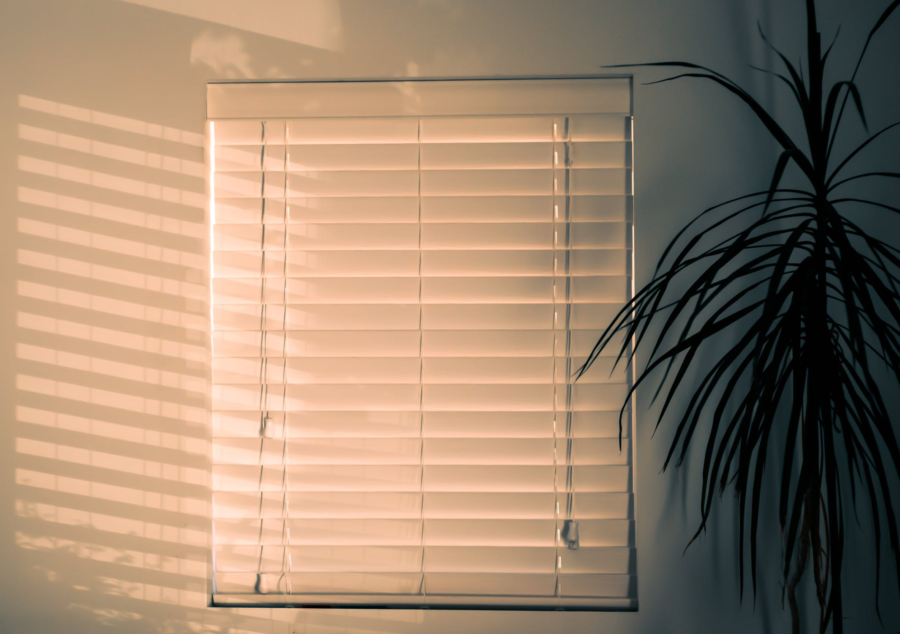 Where Can You Go For Affordable Custom Blinds?